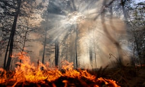 The world is literally on fire – so why is it business as