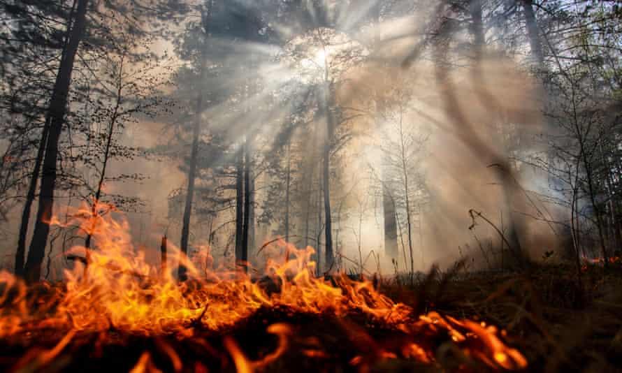 a wildfire in the irkutsk region of russia