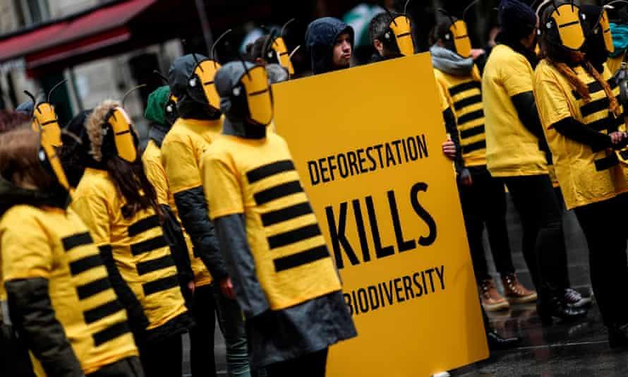 WWF demonstration for biodiversity in Paris