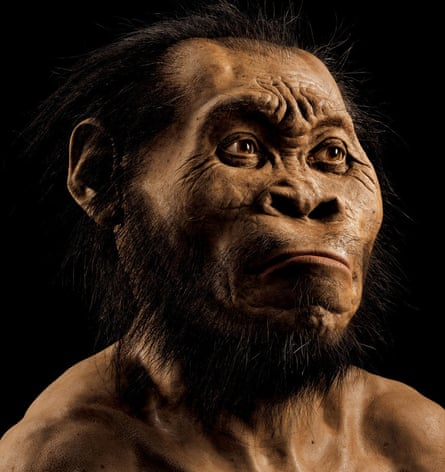Homo naledi, discovered in South Africa, could combine land walking and tree swinging.