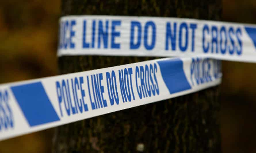 Hampshire police believe the pig's head was placed on the school gates on Wednesday evening.