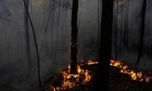 Bushfire in NSW