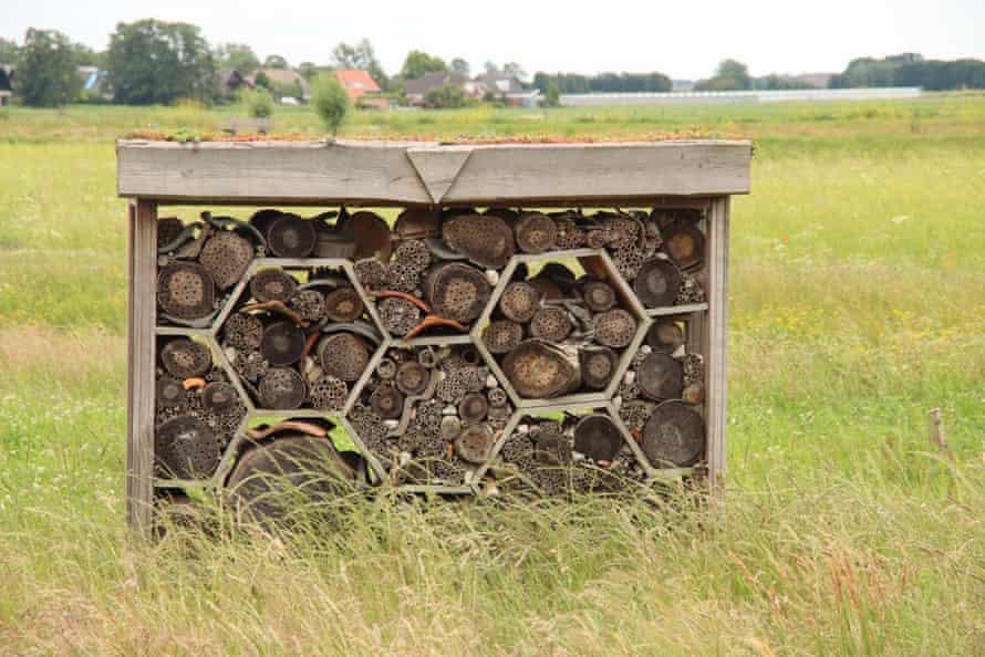 An 'bee hotel' in Hennipgaarde in the Netherlands.