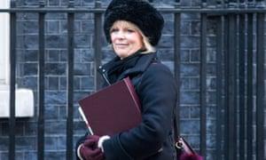Anna Soubry attending cabinet last week