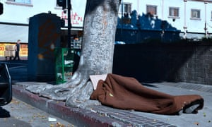 A homeless person sleeps beside a tree on the sidewalk in Skid Row, downtown Los Angeles. Typhus is considered a particular risk to the large homeless population.