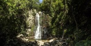 Minnamurra Rainforest waterfalls at Kiama, South Coast