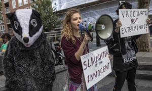 Animal rights activists draw attention to the badger culls outside the Home Office last week.