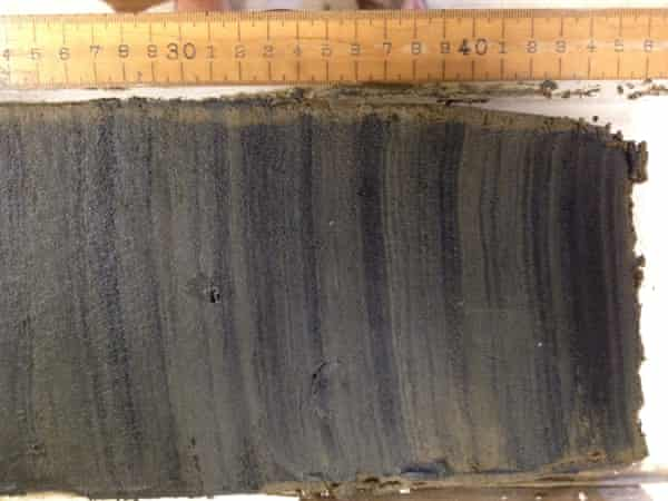 The core cut open, showing the laminated sediment layers of mud.