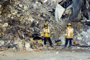 Rescue workers with sniffer dogs search for survivors