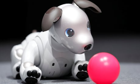 Japan: robot dogs get solemn Buddhist send-off at funerals