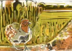 Grey partridge by fine artist Kittie Jones