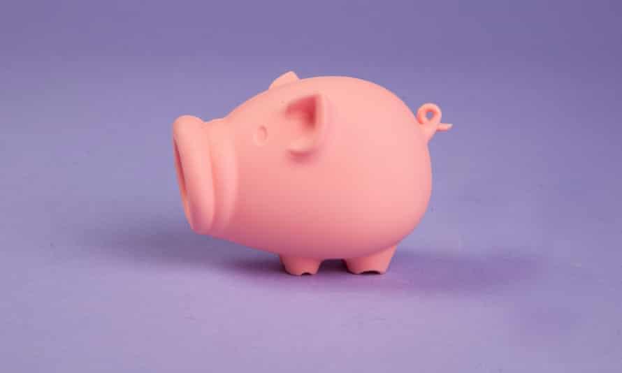 Peleg Design yolk pig