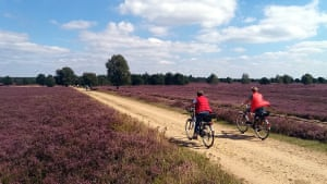 'With hundreds of kilometers of car free signposted cyling routes, Lüneburger Heath in Germany offers offers many options for trekking cyclists, from a couple of hours to a couple of weeks.'