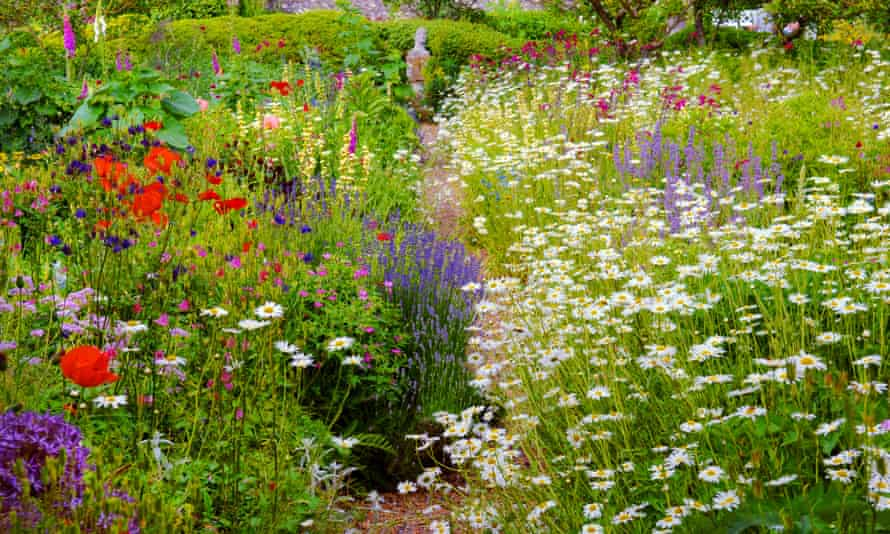 Follow your own path: a herbaceous border in an English walled garden.