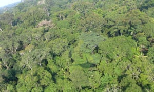 The alleged burning took place in a remote area of the Peruvian Amazon.