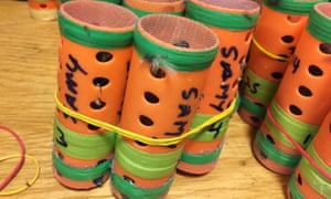 Some of the 70 live finches hidden inside hair rollers found at JFK airport on 8 December.