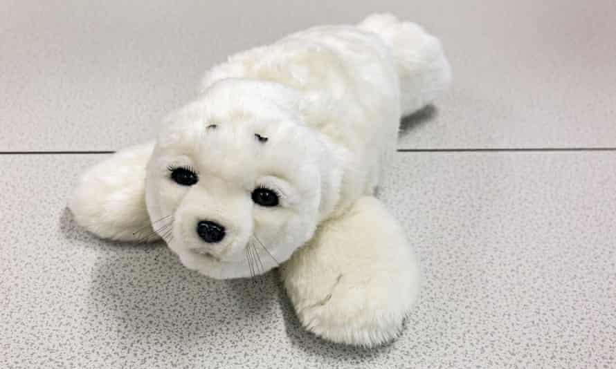 Paro the Seal Robot