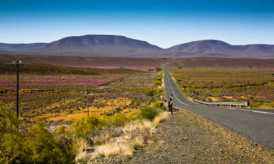 The South African government said exploiting shale gas, which is believed to lie below the Karoo region pictured, is an area of 'real opportunity' for the country.