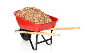 Get chippy: still regarded as a no-no, in fact wood chippings are usually fine.