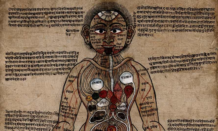 Anatomical study of a man with Nepalese and Sanskrit texts showing an Ayurvedic understanding of the human anatomy.