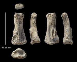 The fossil finger bone from the Al Wusta site, seen from six different angles.