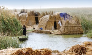 The Ma'dan people in Iraq weave buildings and floating islands from reeds.