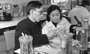 Tu working with Prof Lou Zhicen in the 1950s.
