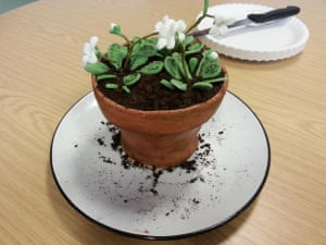 Warwick plant science cake