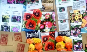 'I am armed with more poppy packets': as well as cornflowers, calendula and zinnias.