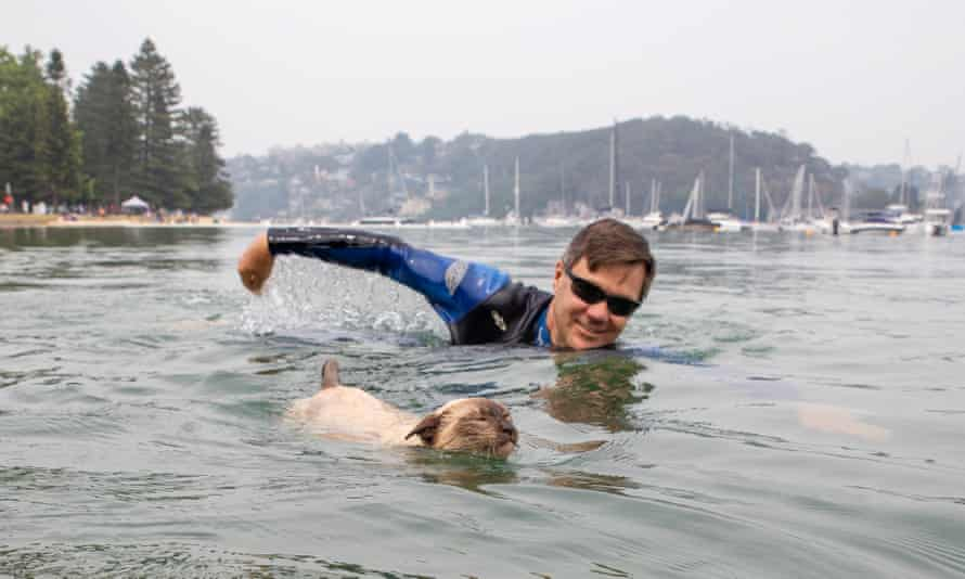 Preference whisperer Glenn Druery with his pet Tonkinese cat Gus, who he is entering in this year's Scotland Island dog swimming race. Gus apparently also enjoys standup paddle-boarding, cycling and hiking.
