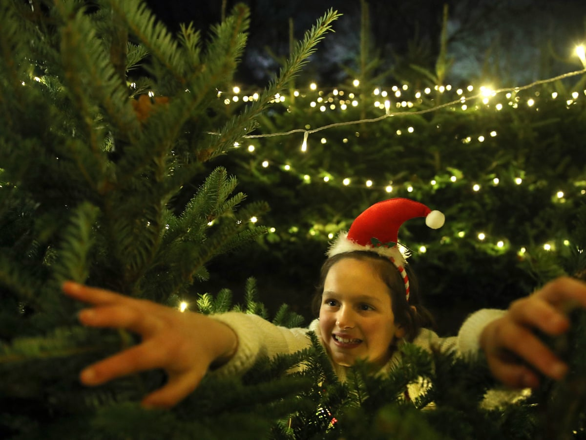 2021 Cost Of Christmas Trees