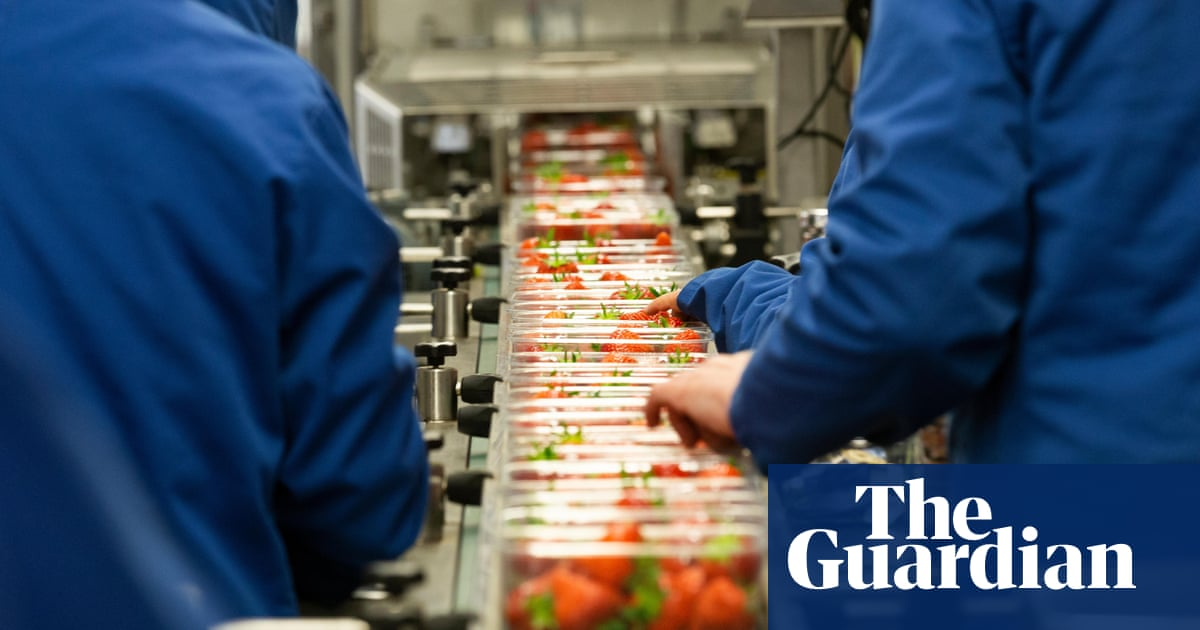 Fears grow as UK factories hit by worst supply chain shortages since mid-70s