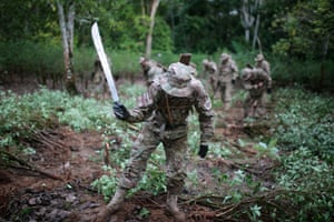 A military officer uses a machete to cut coca plants in Chimore, Bolivia