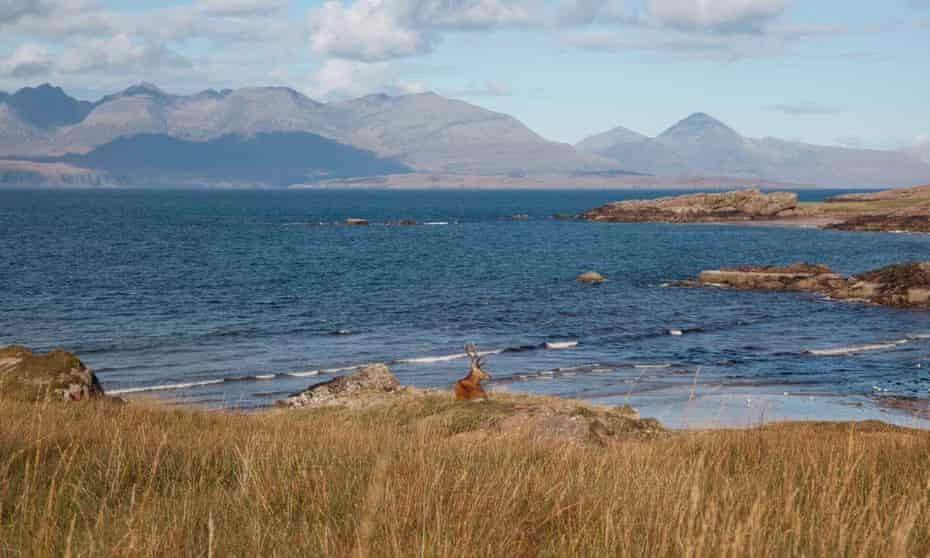 Kilmory Bay. Wild Guide Scotland
