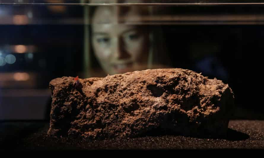 A woman looks at a piece of a fatberg in a display case