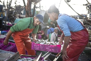 Fishermen transport their catch after docking in the main port in Dakhla