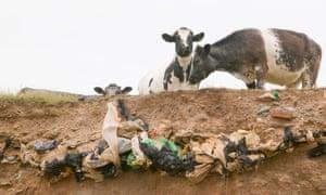 Barrow in Furness: coastal erosion reveals old landfill rubbish buried in sea cliffs.