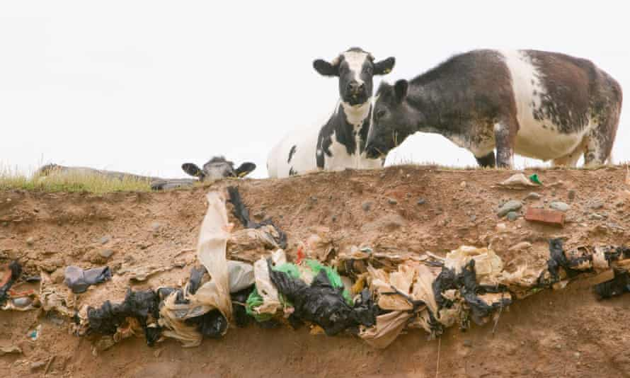 Old landfill rubbish revealed in sea cliffs by coastal erosion.