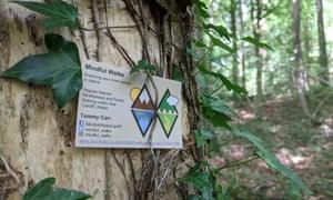 Mindful Walks forest bathing, Fforest Fawr