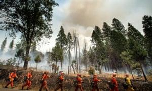Firefighters battle the Ferguson fire in Jerseydale, California.