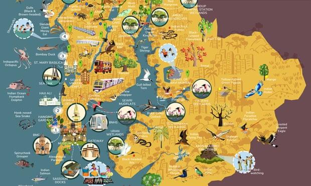 Cartoonist Puts Mumbai Wildlife In One Of A Kind Map