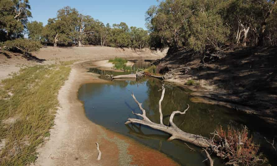 The lower Darling in drought