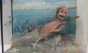 HIdeous 'mermaid' exhibit