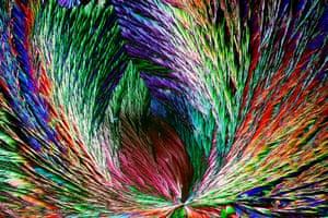 Organic crystals by Henri Koskinen