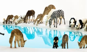 Cai Guo-Qiang's installation Heritage