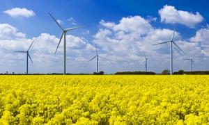 Wind turbines in a field of yellow rape seed plants