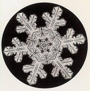 Wilson Bentley snowflakes circa 1920