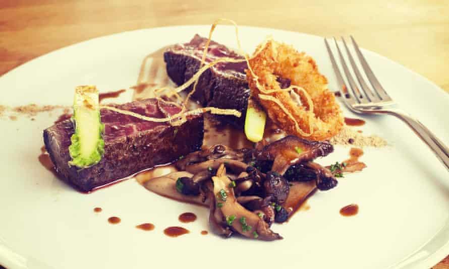 springer Spaniel-cooked-meal