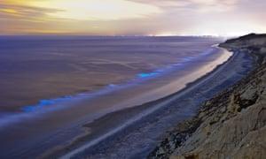The glowing coastline seen from Torrey Pines state beach in San Diego, California.