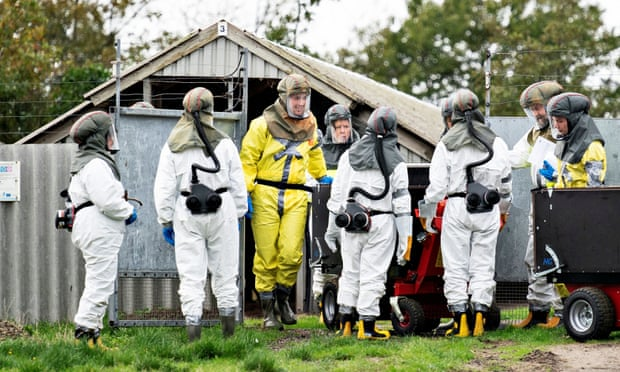 Employees from the Danish Veterinary and Food Administration deal with a Covid outbreak at a mink farm in Jutland in October. Photograph: Henning Bagger/Ritzau Scanpix/Reuters